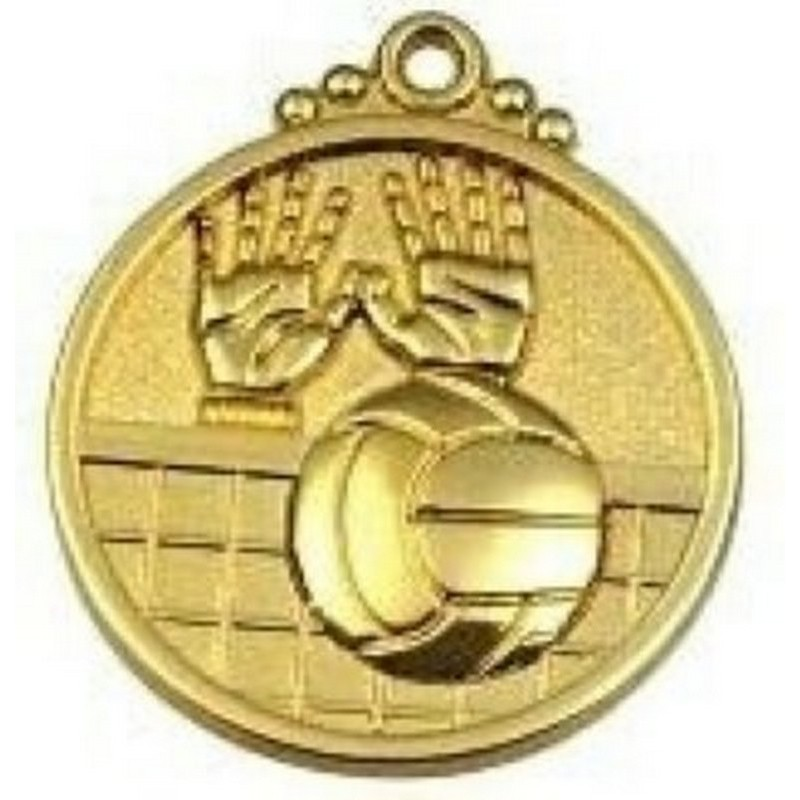Медаль волейбол (28) золото 50мм (1965)